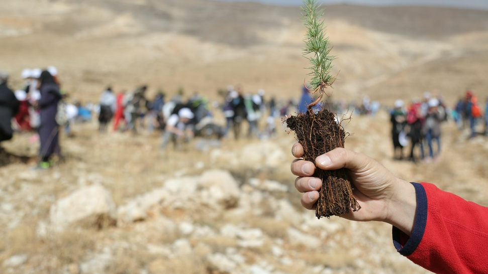 Lessons learned from LiveLebanon - the first UNDP crowdfunding platform